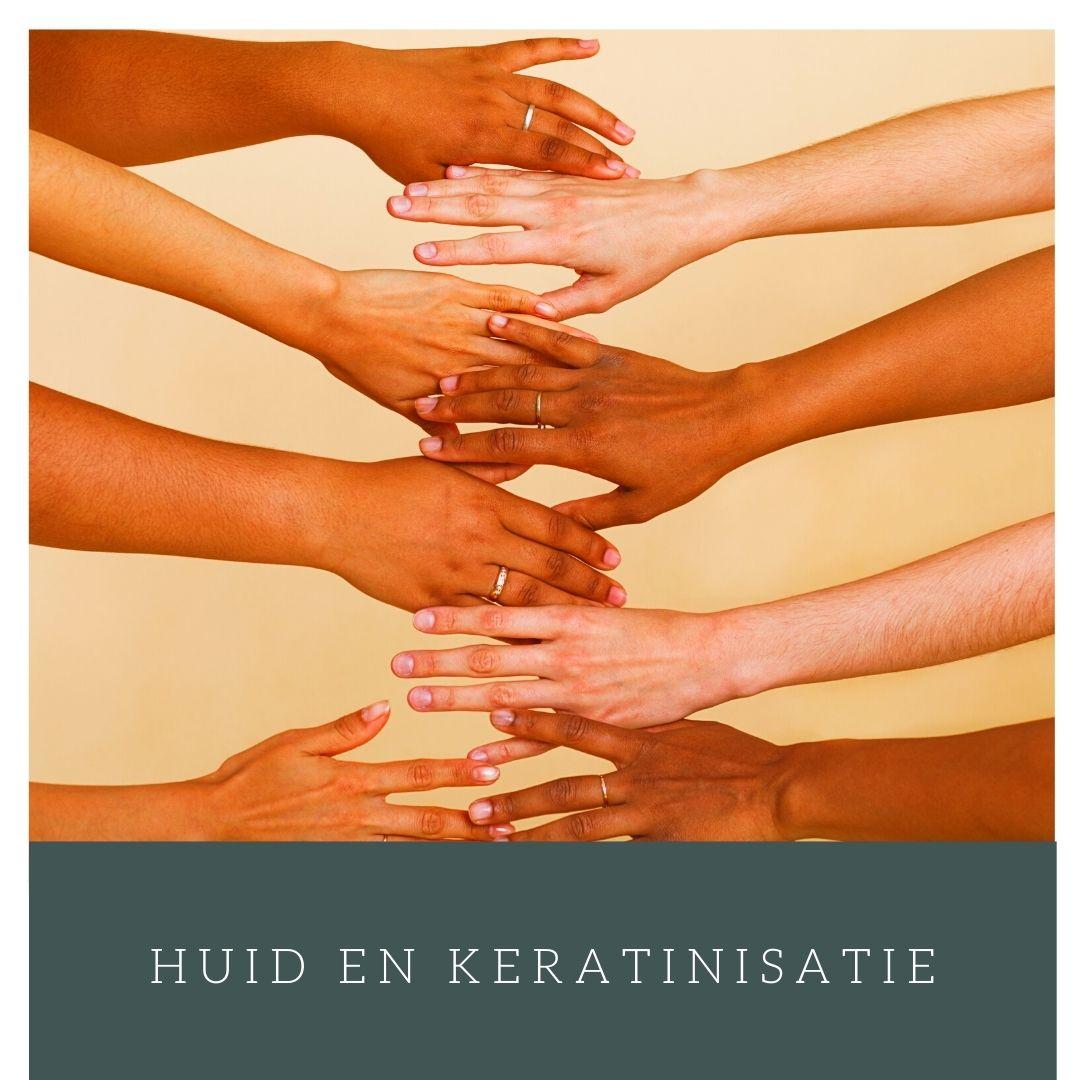 Menselijke huidstructuur en keratinisatie